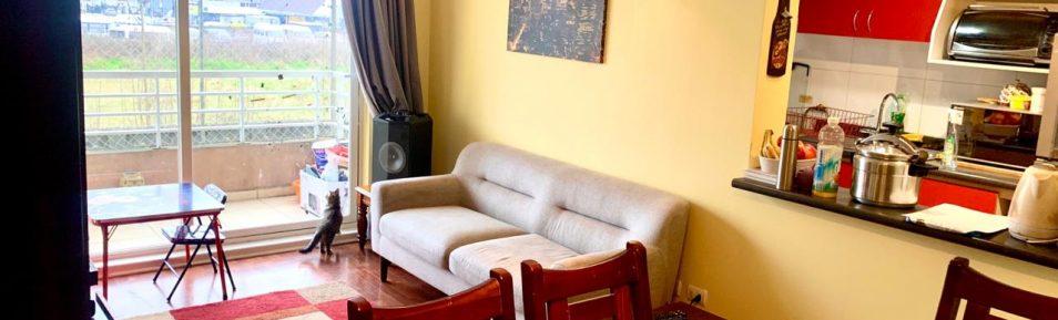 Vendemos departamento renovado de 3 dormitorios en Jardín Urbano, Valdivia